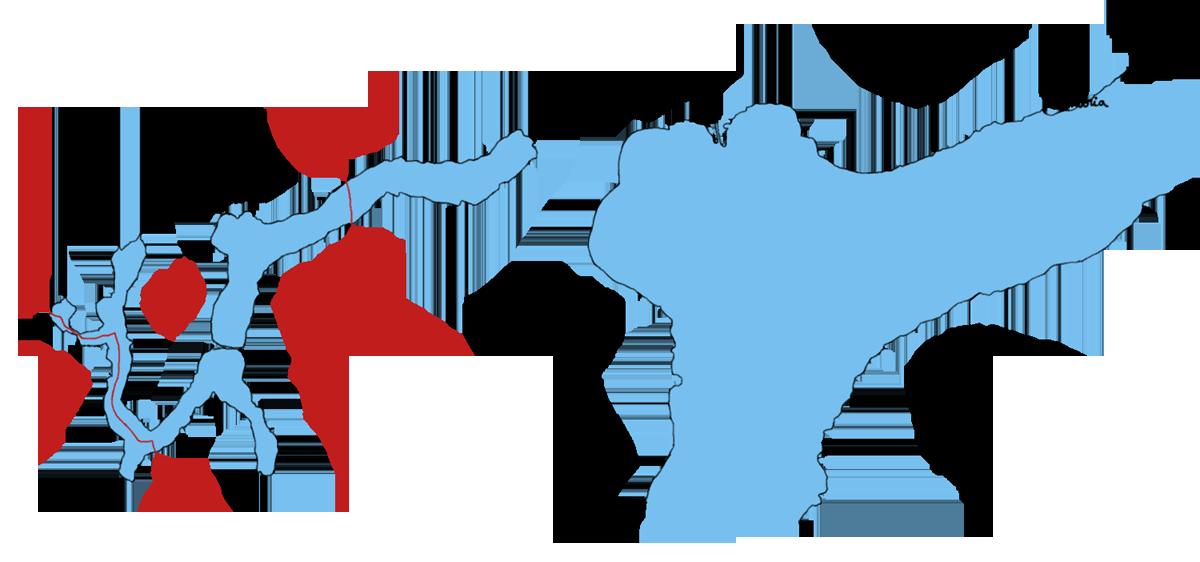 cartelugano