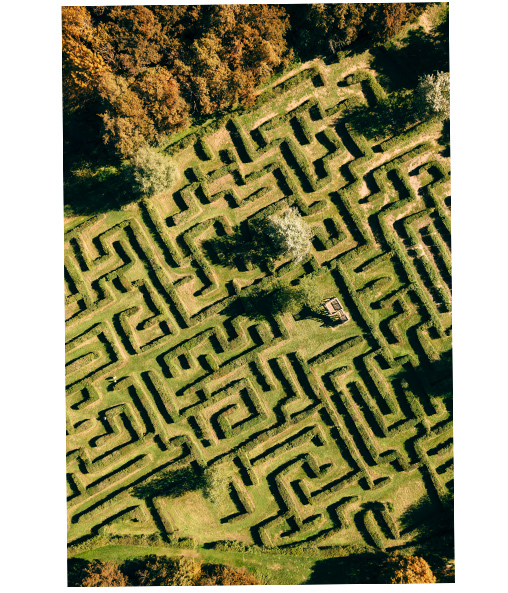 vue aérienne du labyrinthe végétal de Poltrot