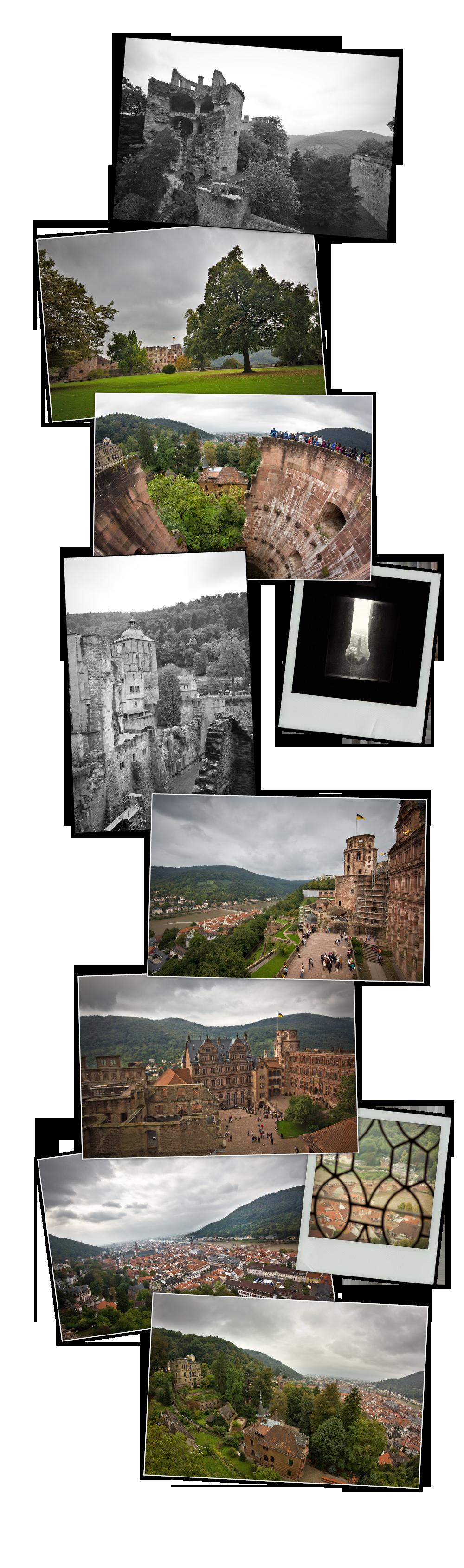 mep Heidelberg _ chateau