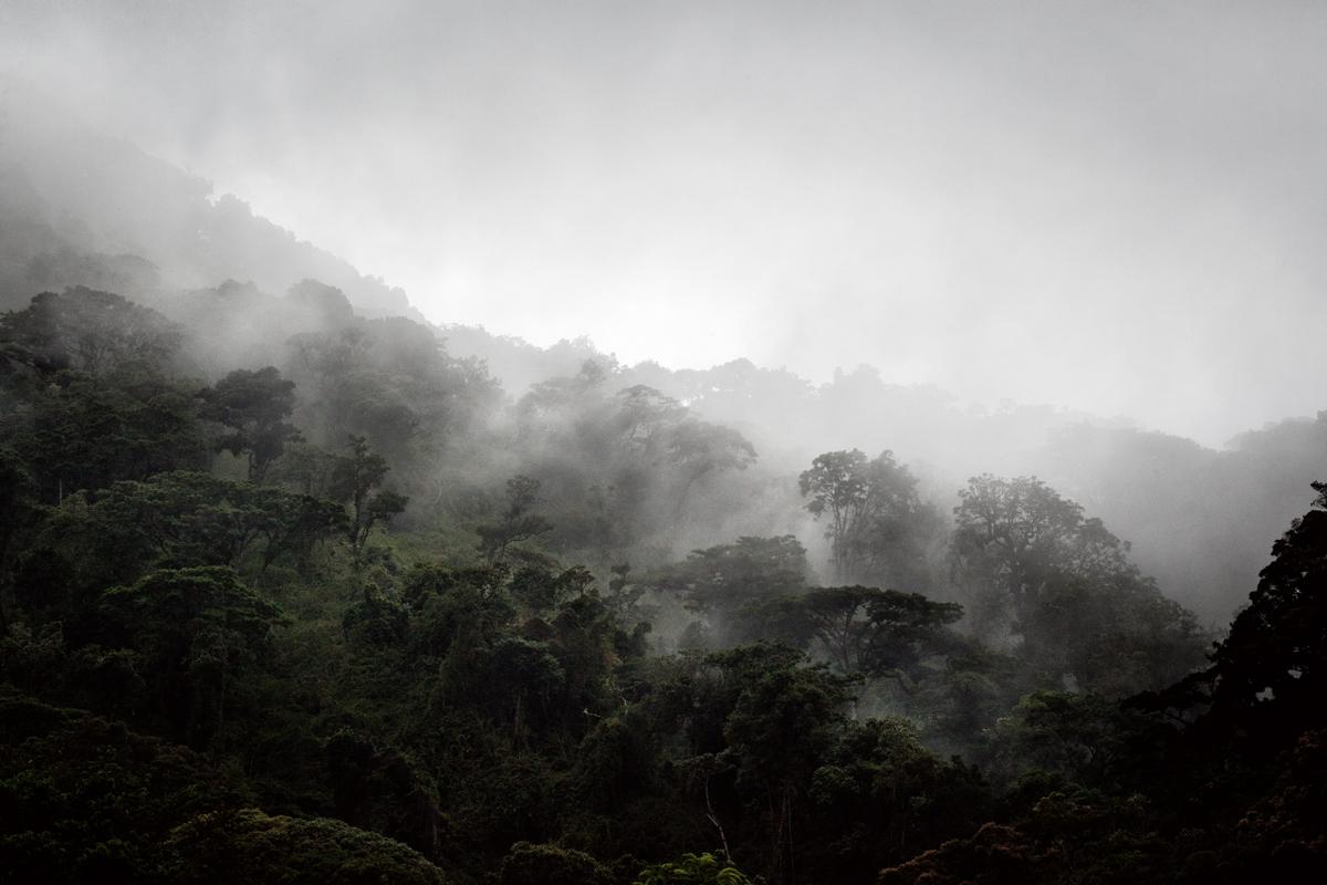 panama_nature-IMG_4136