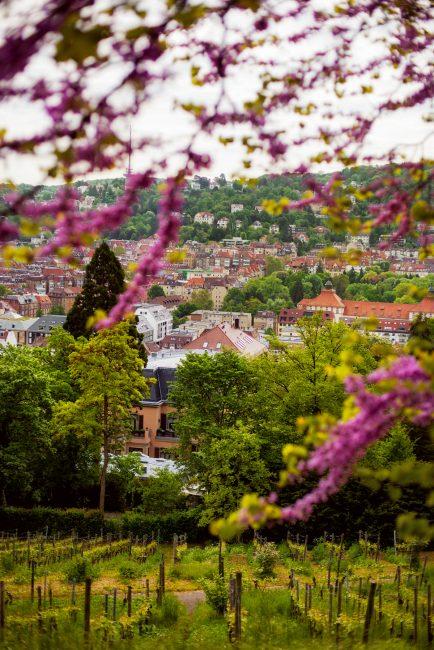 Karlshöhe,, Stuttgart