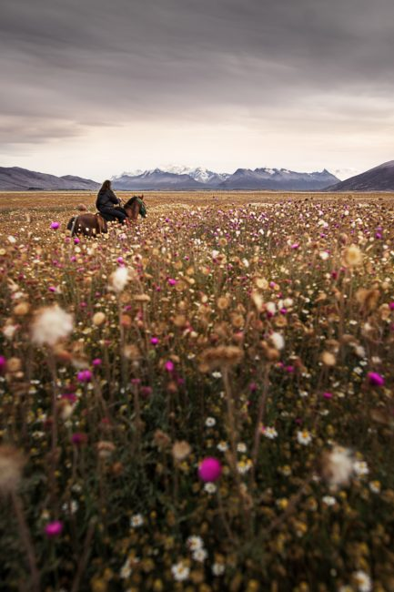 voyage photo Patagonie
