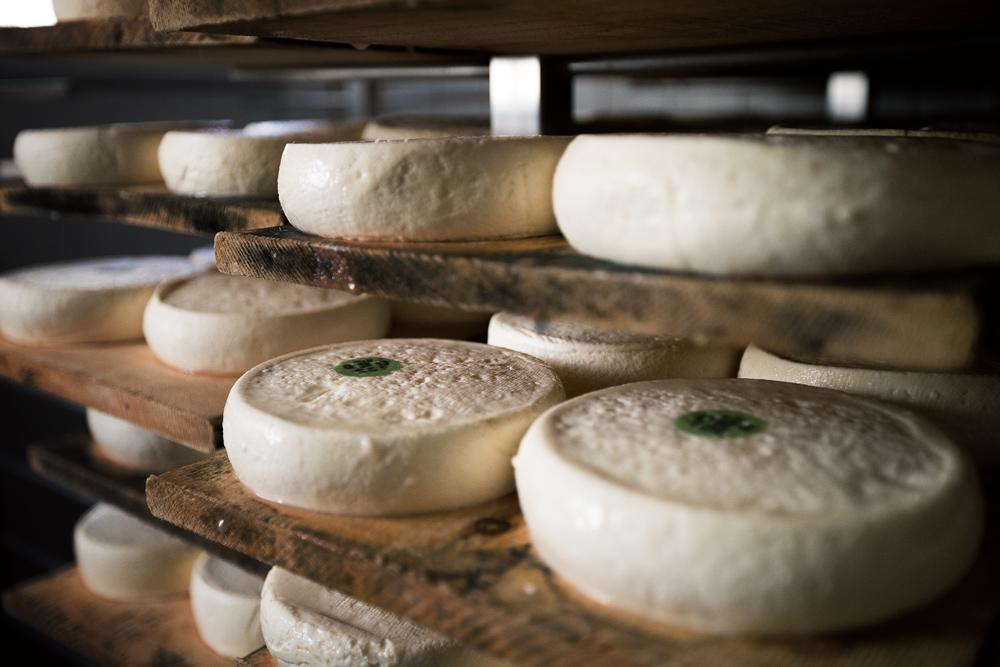 Reblochon, fromages de Savoie