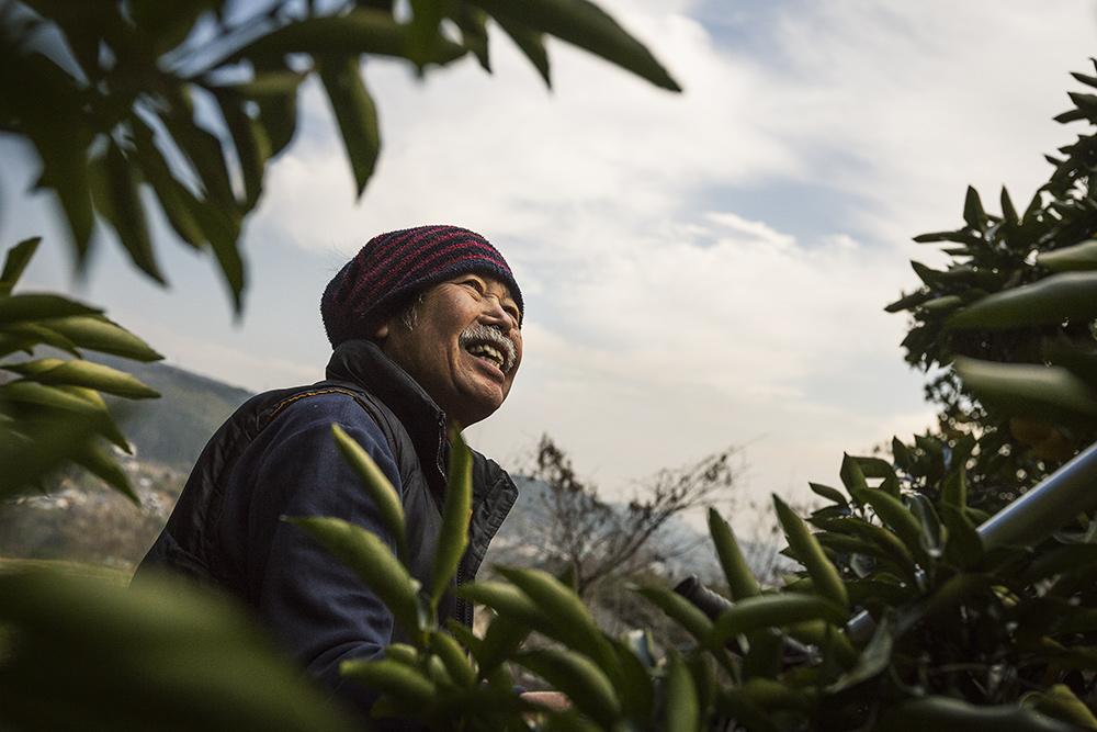 agrotourisme à Oita, Japon