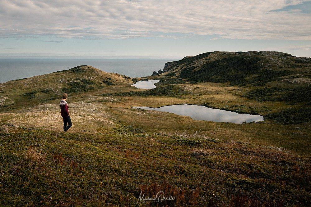 Saint-Pierre et Miquelon, paysages du Cap Miquelon