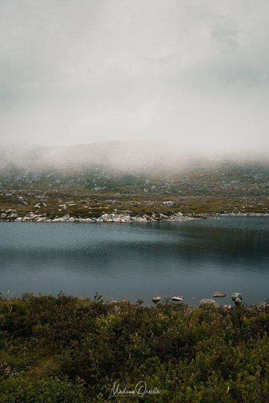 Brouillard sur l'étang Thélot