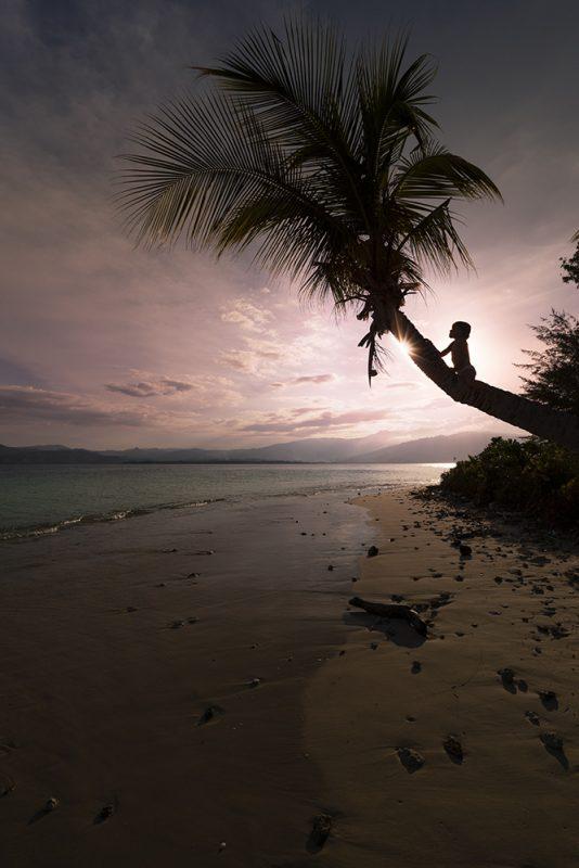 en famille sur une île déserte et paradisiaque, enfant qui grimpe au cocotier