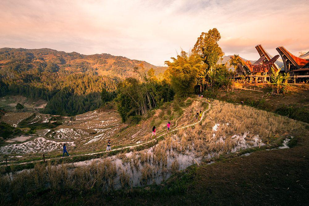coucher de soleil sur les rizières à Dende