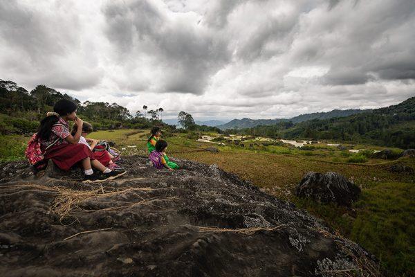 Les paysages de Tana Toraja, Sulawesi