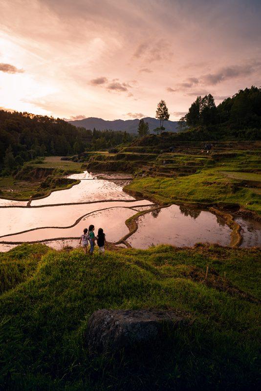ma fille et ses copines jouent dans les rizières