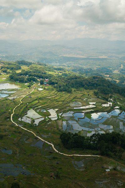 Village toraja de Lempo au milieu des rizières