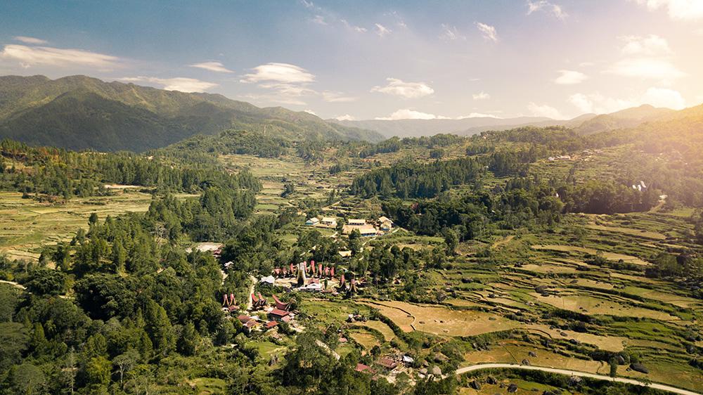Les tongkonans au milieu des montagnes