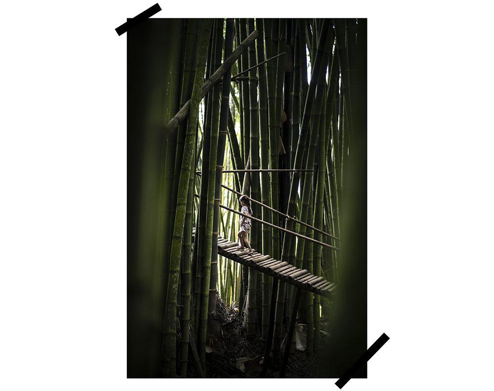 bamboo forest à landorundun