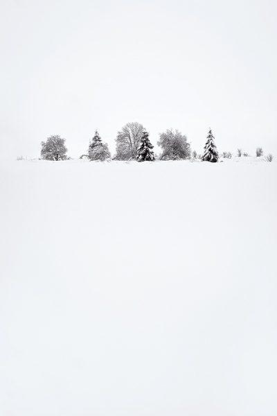 composition minimaliste pour jouer avec le temps gris