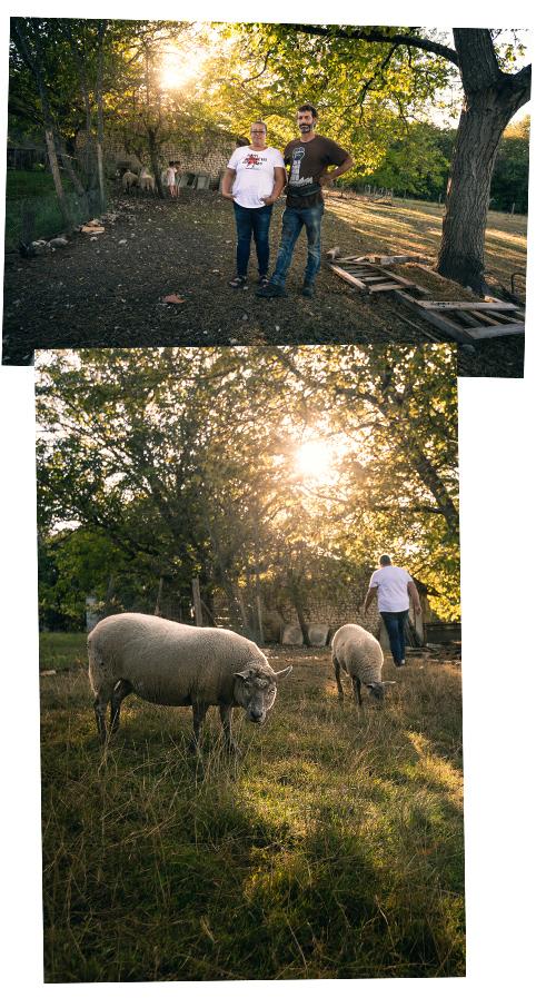 chez Tatie Caro, élevage bio
